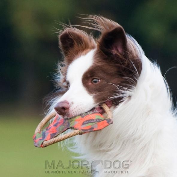 Risultati immagini per gioco frisbee majordog